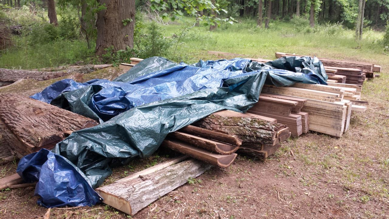 Mobile Sawmill NJ - Felled trees to lumber - stacking and drying